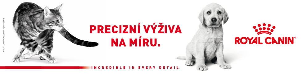 Banner - Royal Canin